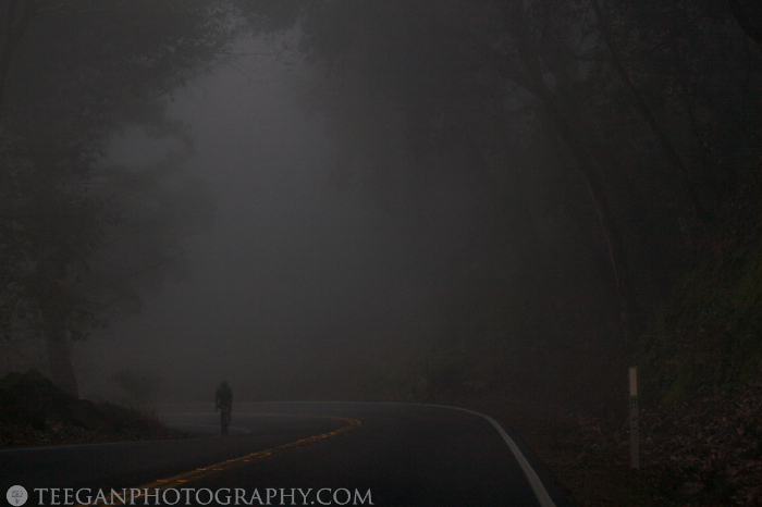 Big-Basin-fog  013