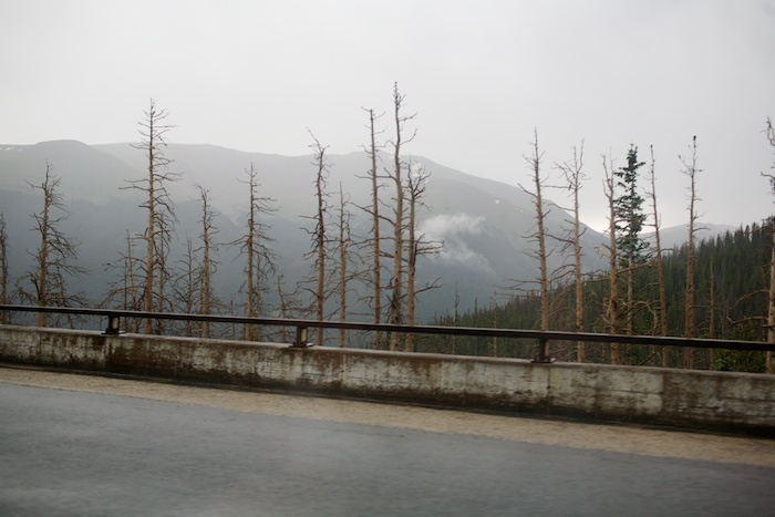 drive through Colorado - US 40